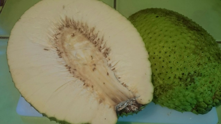 Cut the breadfruit in half, remove the center, peel and cut into strips