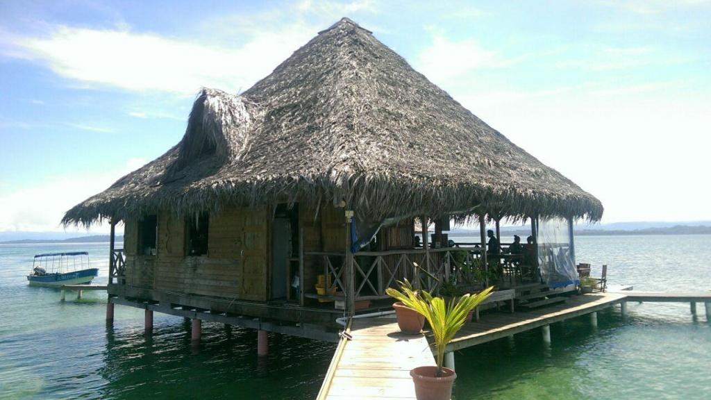 Blue Coconut Restaurant